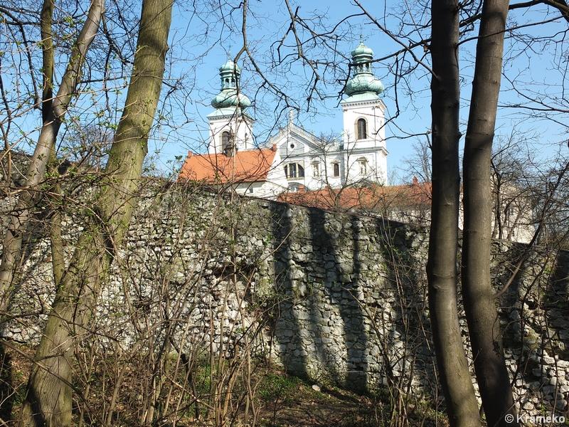 Las Wolski Kultura W Lesie