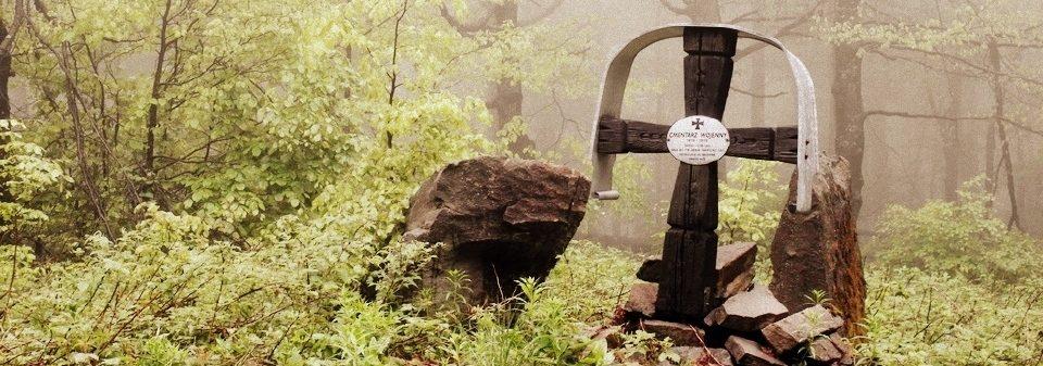 Kultura w lesie